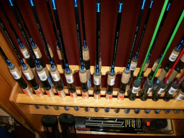 Shakespeare Enduras - Affordable, IM6  graphite rods do a great job for a lot of fisherfolk.  Plus, if you blow one up, you are not out much ka-ching!